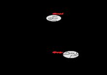 rák malignus hemopátia