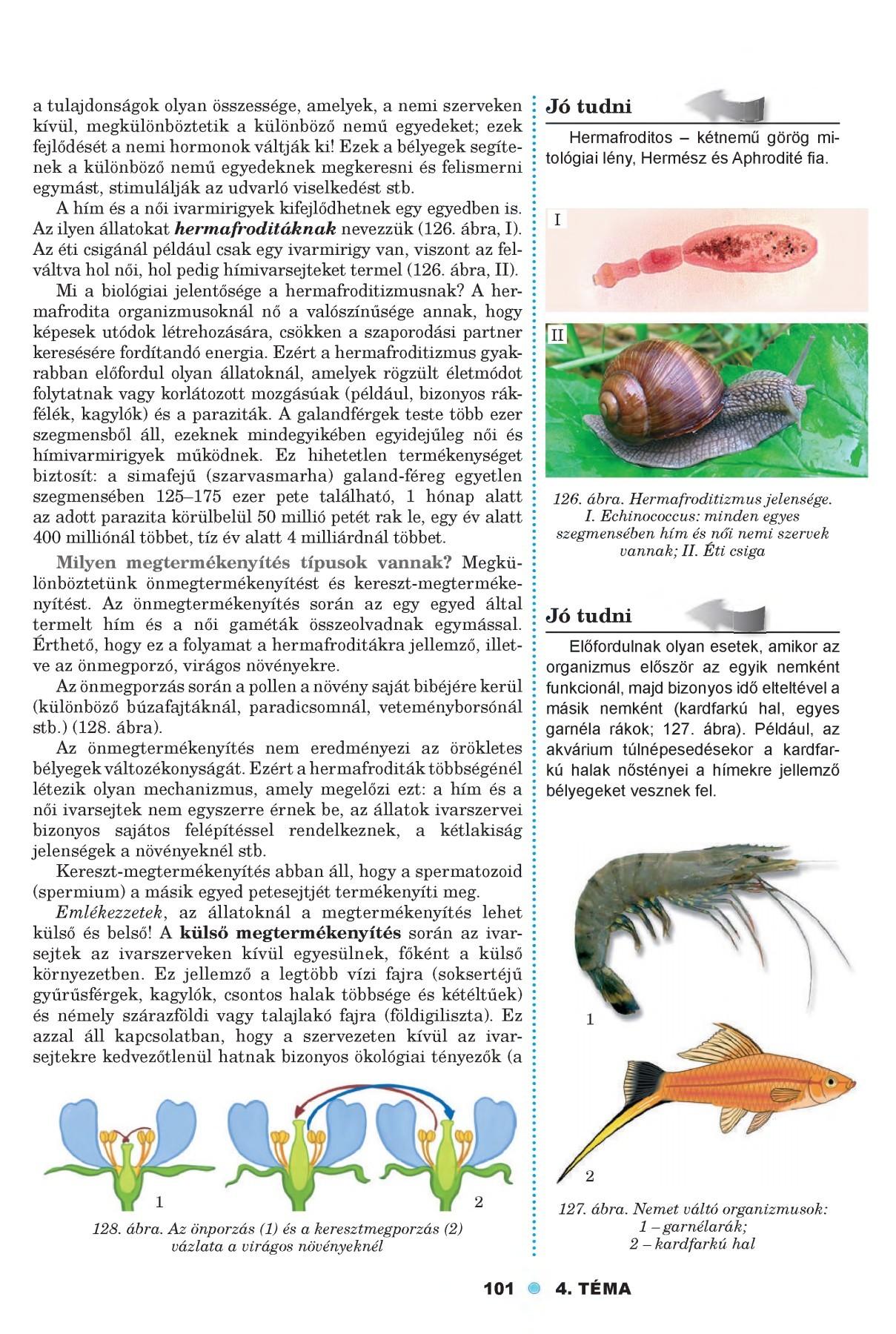helminták és megelőzés)