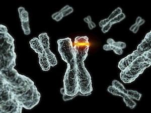 Jelek, amelyek rákmegelőző állapotra utalnak - A leggyakoribb prekancerózisok