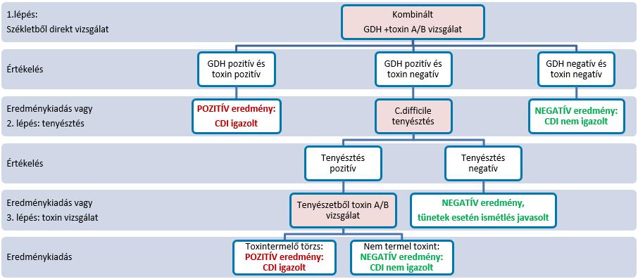 clostridium difficile antigén pozitív toxin pozitív