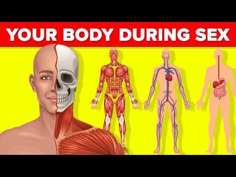 felnőtt emberi körömféreg él