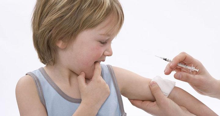 galandféreg jelei orvosság minden típusú féreg ellen