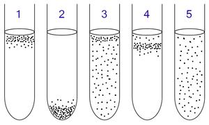Anaerob és kevert bakteriális fertőzés, gázgangréna
