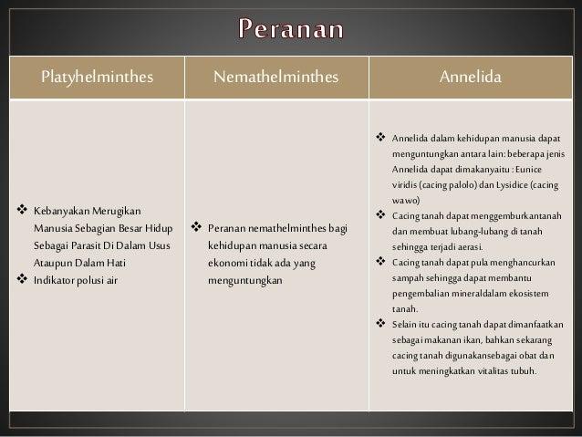Nemathelminthes peran yang menguntungkan - p5net.ro