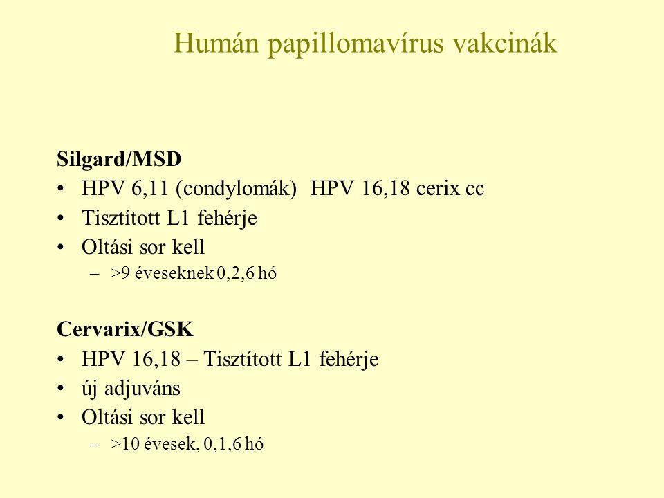 A papillomavírus elleni hatékony vírusellenes szerek: kezelés és terápia - Fertőzés