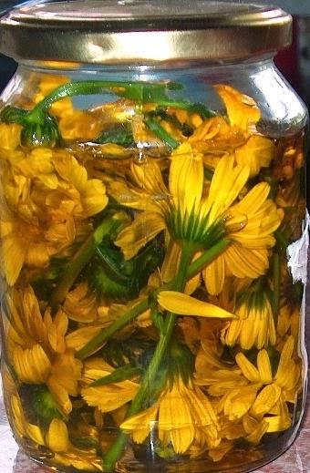 körömvirág szemölcsökkel kénes kenőcs a papillómákból