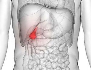 Az epehólyagrák és tünetei