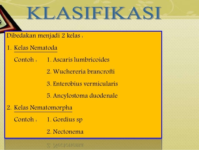 Nemathelminthes contoh phylum. Contoh phylum nemathelminthes. MOLLUSCA, ARTHOPODA DAN ECHINODERMATA