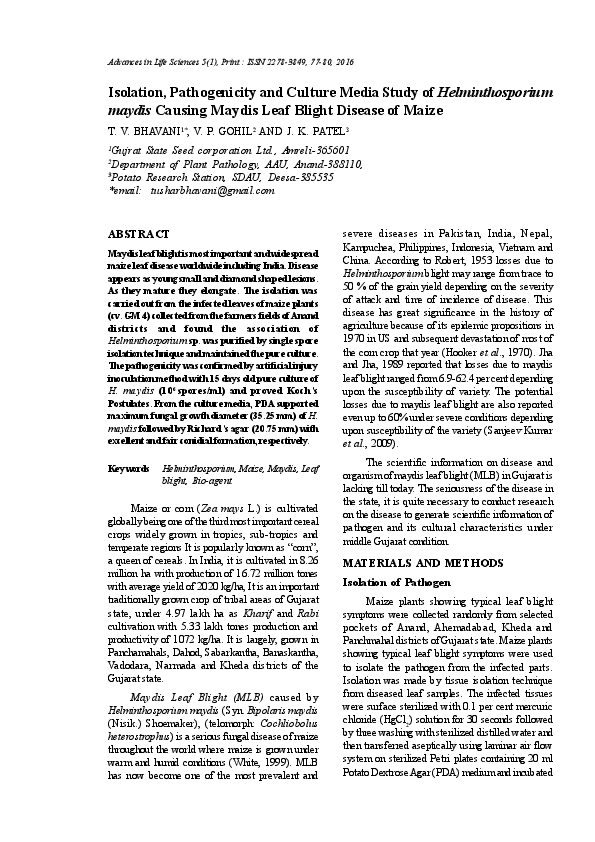 a helminthosporium maydis elleni védekezés