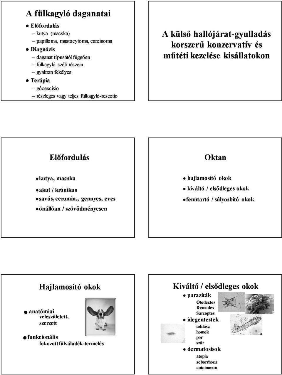 a papillómák komplex kezelése