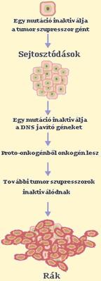A 10 legveszélyesebb daganattípus