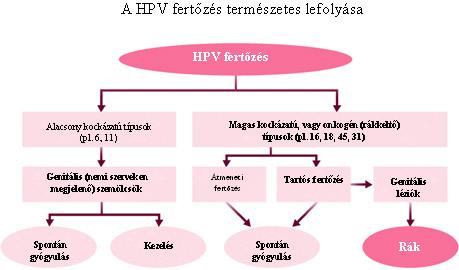 ami magas kockázatú hpv-t jelent gyógyszer giardiasis felnőtteknél