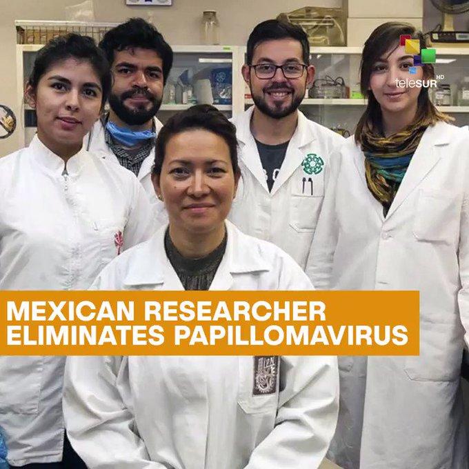 Hpv vírus gyógyítja mexikói tudós Vastagbél méregtelenítés acai bogyó méregtelenítés