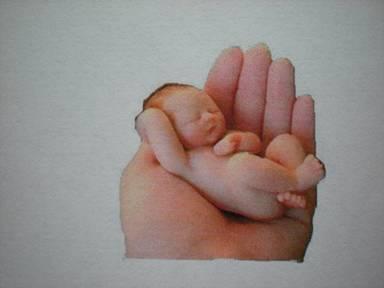 giardia alapozó csecsemőknél giardia drontal plus