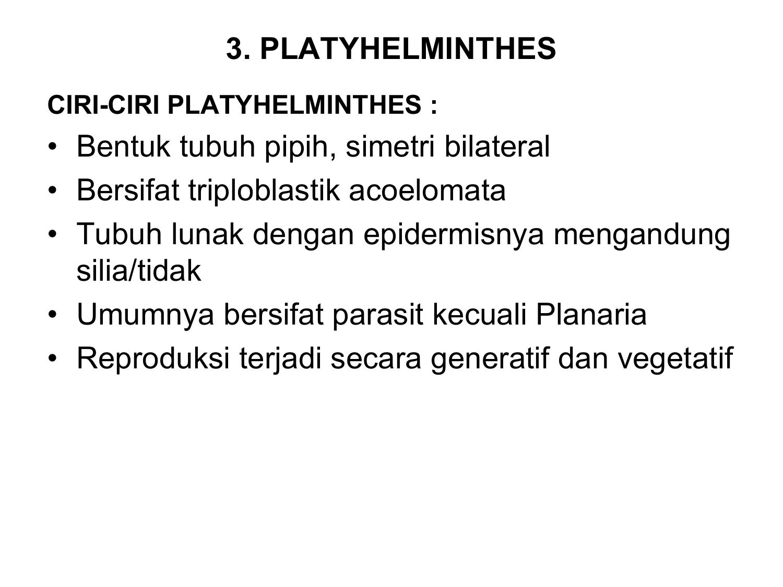 parazita eva 2 a streptococcusok aránya egy kenetben férfiaknál