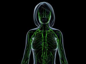 A limfóma - Mutáció.hu