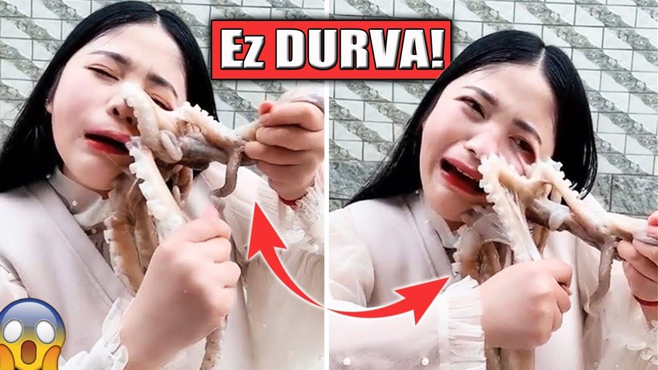 pinwormok, amelyek esznek
