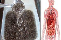 parazita tea vélemények emlőrákos csoportok