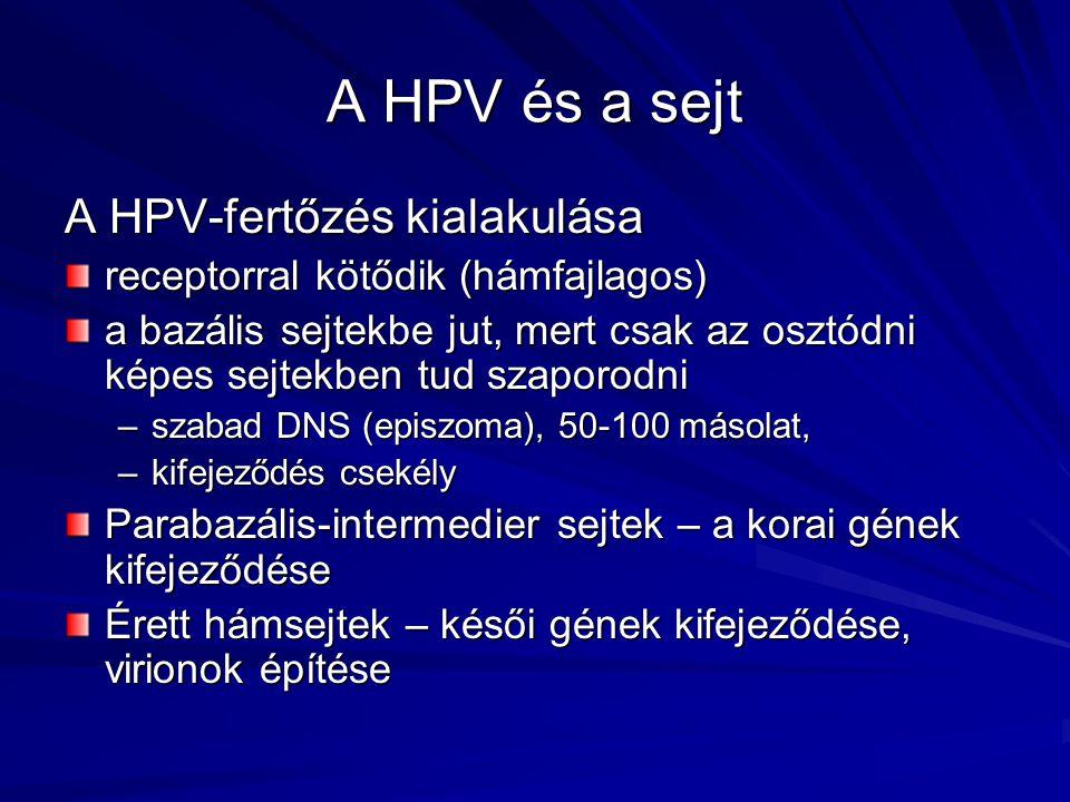 hpv vakcina oropharyngealis rák ellen)