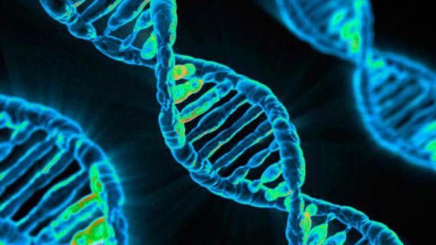 családi rák benyújtása HPV és rák cikkek