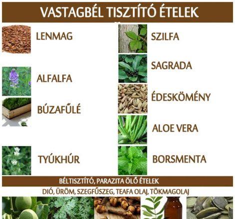 A béltisztítás és a béltisztító gyógynövények
