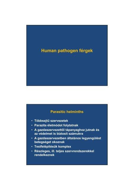 A parazita gyógyszerek neve és áttekintése, A paraziták gyógyszereinek neve és áttekintése