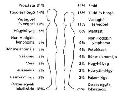 a prosztatarák befolyásolja a veséket széles spektrumú féreghajtó felülvizsgálatok