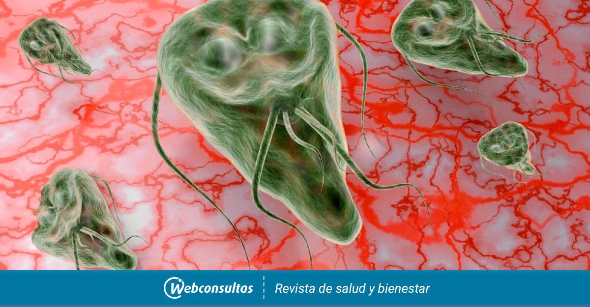 a genitális szemölcsök molekuláris rezonancia eltávolítása