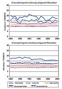 A hasnyálmirigyrák és a magnéziumhiány kapcsolata | Gyógyszer Nélkül