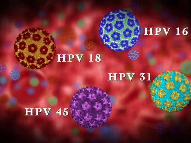 magas kockázatú típusú humán papillomavírus hpv kimutatása