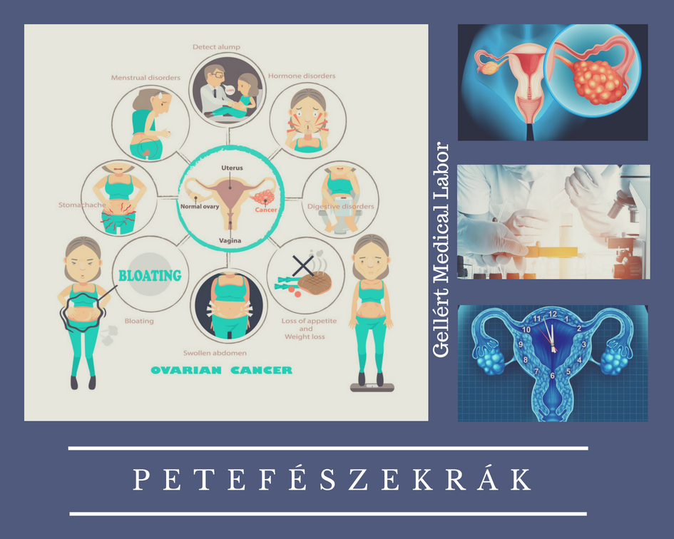 hpv férfiaknál az első tünetek parazita és jetri